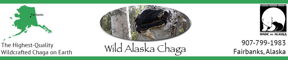 Wild Alaska Chaga