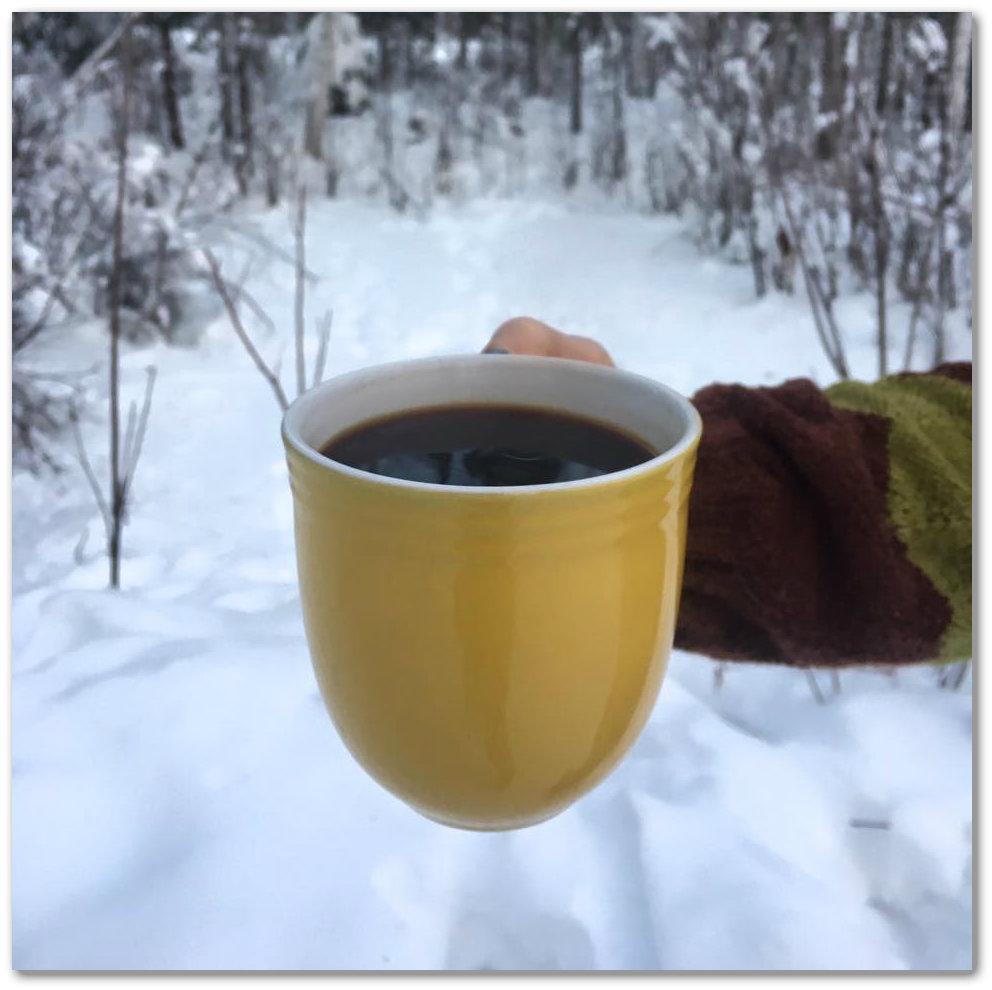 Wild Alaska Chaga Tea Cup