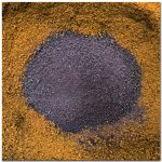 Alaska Ground Chaga Blueberry