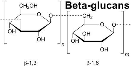 Beta-glucans in Chaga